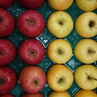 りんご サンふじ&星の金貨5kg 20玉(フルーツ)