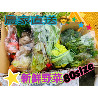 野菜詰め合わせ 80size (野菜)