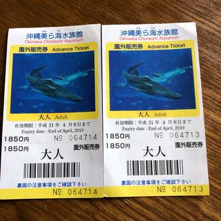【期限間近のSALE商品】沖縄美ら海水族館のペアチケット(水族館)