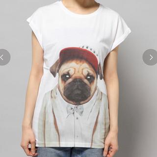 ジェットセット(JET SET)のJETSET SOLO PLUS プリントTシャツ(Tシャツ(半袖/袖なし))
