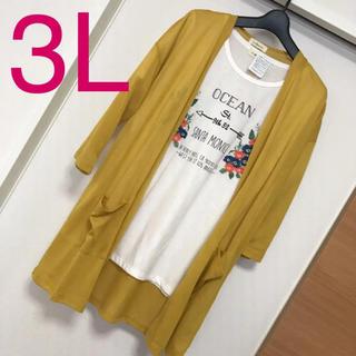 新品未使用タグ付き 3Lサイズ 花刺繍Tシャツ カーディガンセット 大きいサイズ(アンサンブル)