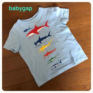 ベビーギャップ(babyGAP)のbabygap サメTシャツ95(Tシャツ/カットソー)