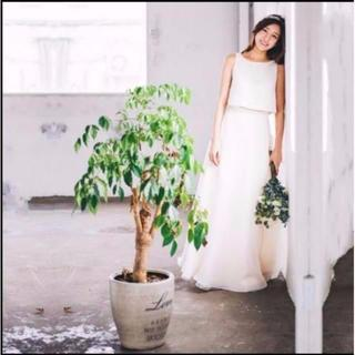 ウエディングドレス セパレート 上質オーガンジー(ウェディングドレス)