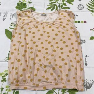 ミナペルホネン(mina perhonen)のサリースコット トップス(Tシャツ(半袖/袖なし))