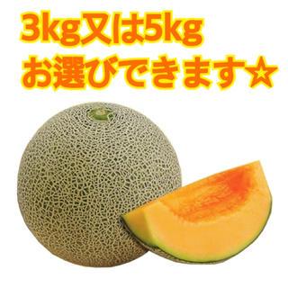産地直送 茨城県鉾田市産 むつみレッド 3kg 5kg 糖度15度以上(フルーツ)