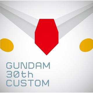 GUNDAM 30th CUSTOM(アニメ)