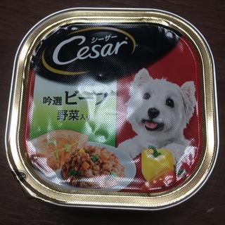 シーザー(CASAR)のシーザー ❤️吟選ビーフ  野菜入り(ペットフード)