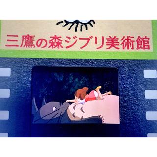 ジブリ(ジブリ)の指紋なし三鷹の森ジブリ美術館 フィルム 入場券 めいちゃん トトロ ツーショット(美術館/博物館)