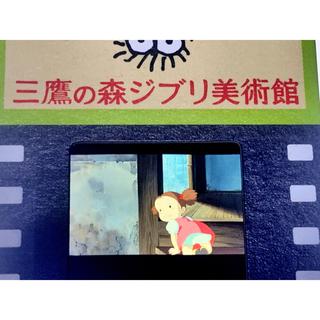 ジブリ(ジブリ)の指紋なし 三鷹の森ジブリ美術館 フィルム 入場券 となりのトトロ メイちゃん(美術館/博物館)