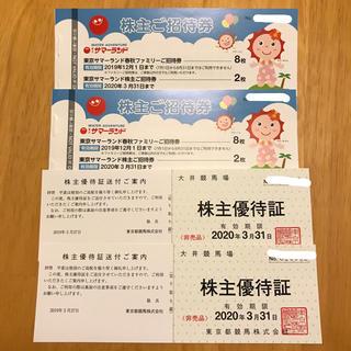 東京サマーランド 株主優待券 2冊 (遊園地/テーマパーク)