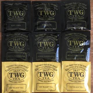 1837 TWG 人気3点セット(茶)