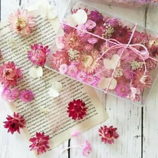 お花の贈りもの*カシスピンク(ドライフラワー)