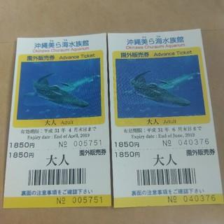 値下げ!美ら海水族館 ペアチケット(水族館)