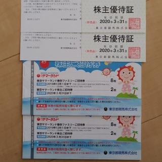 東京都競馬 株主優待 株主ご招待券 2セット(遊園地/テーマパーク)