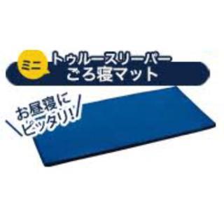 【mapan様専用】トゥルースリーパーごろ寝マット 2枚セット(マットレス)