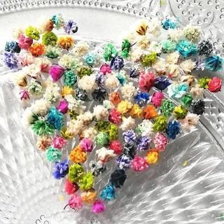 かすみ草29カラフル小花 ドライフラワーレジンハーバリウムキャンドルボタニカル(ドライフラワー)
