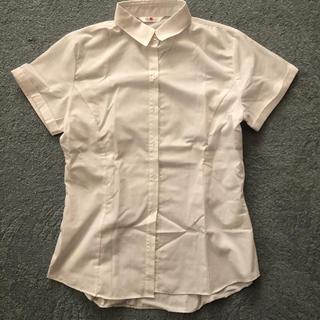アオキ(AOKI)のレディース ワイシャツ 半袖 美品(シャツ/ブラウス(半袖/袖なし))