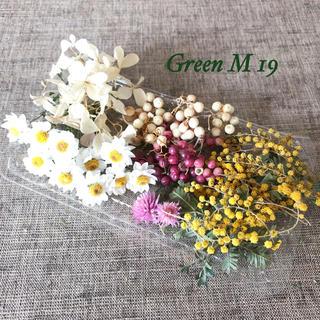ミモザのドライフラワーと5種類の花材セット(ドライフラワー)