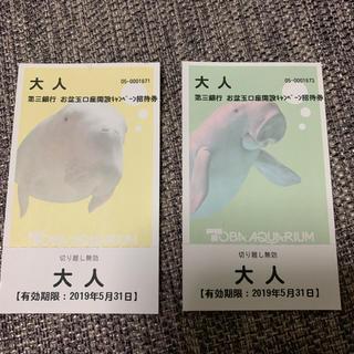 鳥羽水族館チケット  大人2枚🐠🐠   【kan様専用】(水族館)