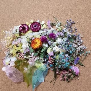 ②ドライフラワー 花材 花びら ヘッド 小花 いろいろ mix (ドライフラワー)
