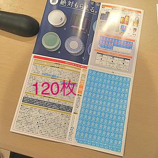 タチキチ(たち吉)の金麦 あいあい皿キャンペーン2019 120枚(食器)