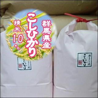 お試しセール!群馬県みなかみ産 コシヒカリ  10㎏(米/穀物)