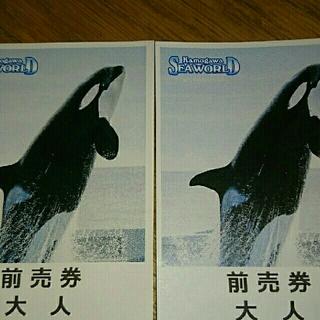 鴨川シーワールド大人2枚+割引券(水族館)