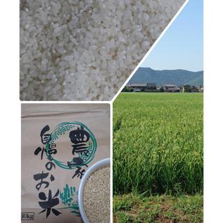 bubu様専用です❤︎(米/穀物)