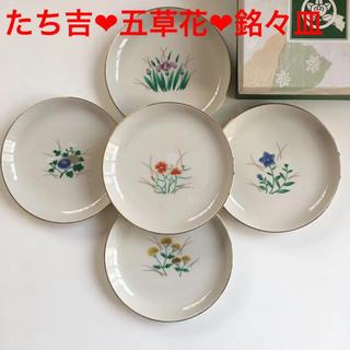 タチキチ(たち吉)の新品未使用❣️ たち吉 ❤︎五草花❤︎銘々皿❤︎5枚セット(食器)