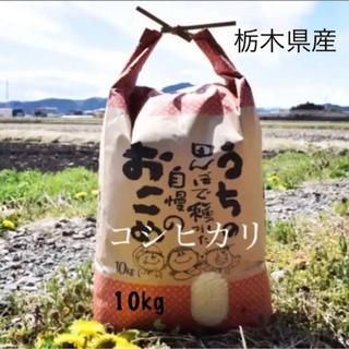 おすすめ★農家自慢のお米★白米10kg(米/穀物)