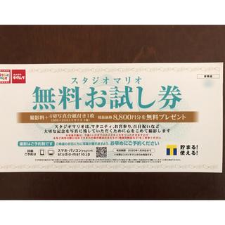 スタジオマリオ 無料券(アルバム)