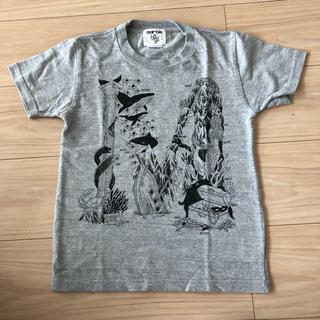 ドアーズ(DOORS / URBAN RESEARCH)のマーブルシュッド 130cm 手描きM Tシャツ(Tシャツ/カットソー)