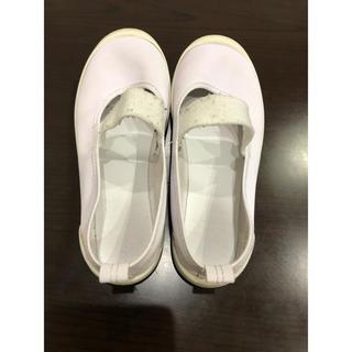 シューズ 室内履き ホワイト 19cm(スクールシューズ/上履き)