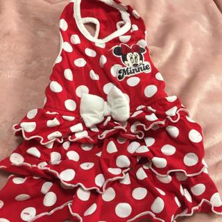 ディズニー(Disney)の犬服 ミニーちゃんワンピース DSサイズ(犬)