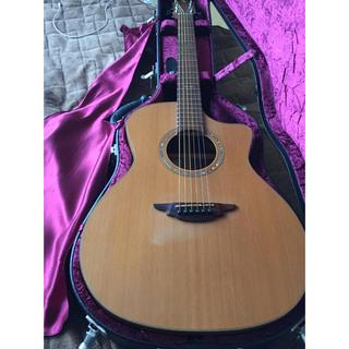 nagaギター caw18 ナガギター (アコースティックギター)
