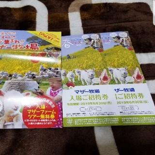 マザー牧場 招待券セット(遊園地/テーマパーク)