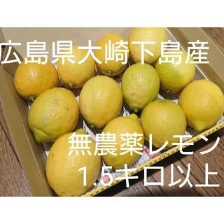 広島県大崎下島産 無農薬レモン 1.5キロ(フルーツ)
