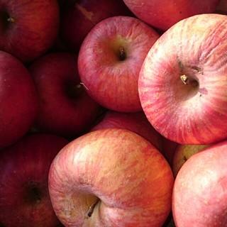 たんぽぽ様専用、りんご11キロ訳あり加工用(フルーツ)