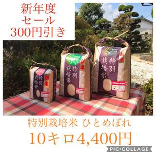 GW前セール\(^^)/宮城県産ひとめぼれ10キロ(米/穀物)