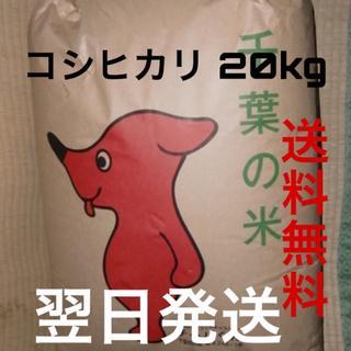 千葉県産コシヒカリ20kg