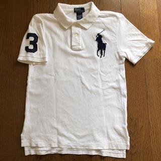 ポロラルフローレン(POLO RALPH LAUREN)のラルフローレン ポロシャツ 白 レディース(ポロシャツ)