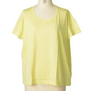 サンスペル(SUNSPEL)の未使用☆SUNSPEL☆サンスペル☆(Tシャツ(半袖/袖なし))