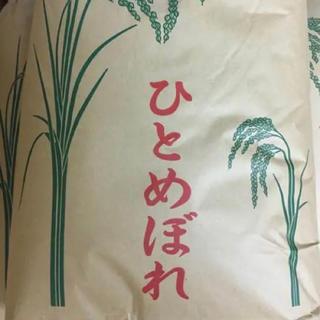 【はらぺこあおむし様 専用】平成30年度ひとめぼれ精米25kg(米/穀物)