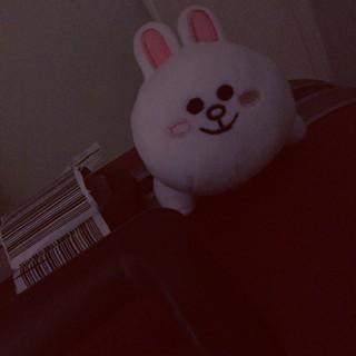 エポック(EPOCH)のPoyoko 様 専用 ◎(ぬいぐるみ/人形)