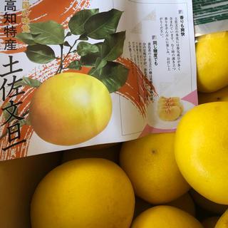min'様専用   文旦&さぬきひめ(フルーツ)