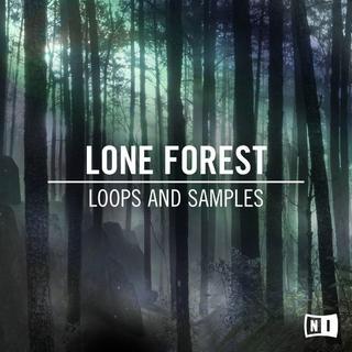 Expansion-Lone Forest /NativeInstruments