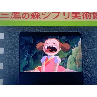 ジブリ - 指紋なし三鷹の森ジブリ美術館 フィルム 入場券 めいちゃんアップ となりのトトロ