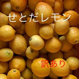 せとだレモン  2.5キロ 訳あり(フルーツ)
