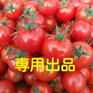 屋風様ご専用☆ミニトマト3㎏【ゆうパック】(野菜)