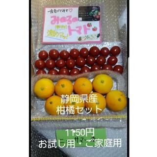静岡県産ニューサマー&みのるのミニトマトセット(フルーツ)